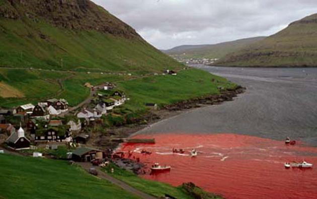 Faroe 03